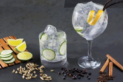 Gin Tasting & Lunch